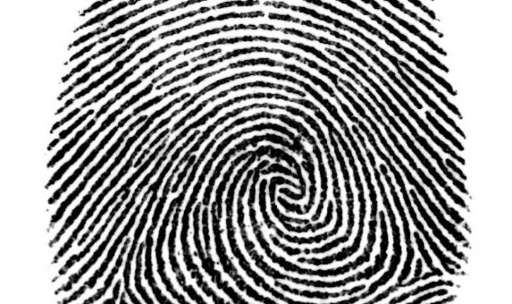 Fingerprint Learning